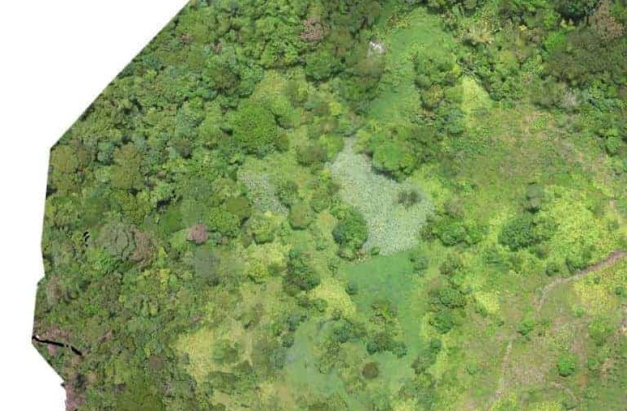 Land-use-mapping-by-drone-Panama